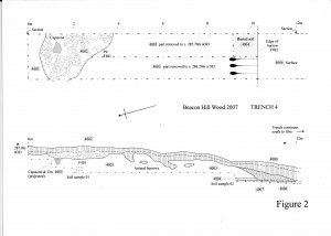 Figure 2. Section through Trench 4.