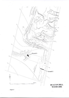 2006 Trench Plan
